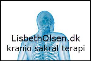 lisbeth-olsen-banner