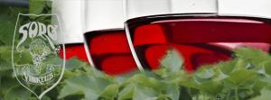 vinklub