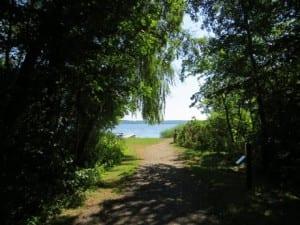 Viden om lokale ørne