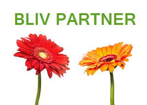 bliv partner3