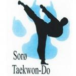 sorø taekwon-do
