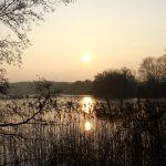 Smuk sol og søen