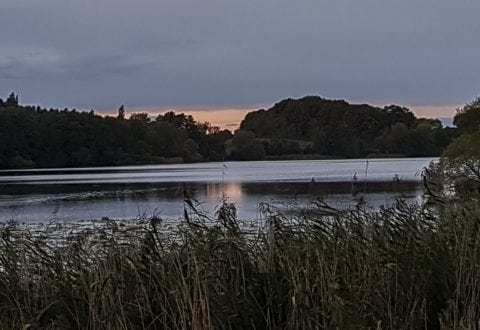 Eventyrlige Pedersborg Sø